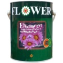 Flower Enamacryl Waterbased Enamel  (Hong Kong)