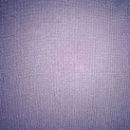 Terylene/Rayon Fabric (Mainland China)