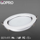 15W LED Down light (China)