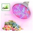 Par38 E27 LED Grow Lamp 8W (Hong Kong)