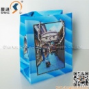 3D Plastic Gift Bag (Mainland China)