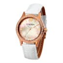 Apsara Stainless Steel Diamond Watch (Hong Kong)