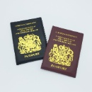 PVC Passport Holder (Hong Kong)