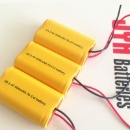 2.4V NICD Battery Pack for Mosquito Bat (Hong Kong)