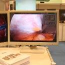 Endoscopic Surgical Display (China)