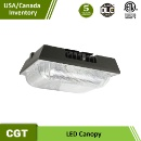 LED Petrol Station 75W Canopy Light (China)
