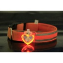 Flash Pet Pendant Collar (Mainland China)