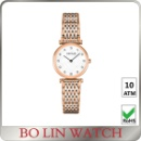 Mother of Pearl Dial Watch Fashion (China)