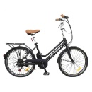 Electric Bicycle (China)