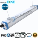 Dualrays D2 Series LED Tri-Proof Light (Mainland China)