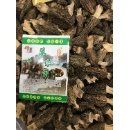 Yang Du Jun (Mushroom) (Mainland China)
