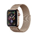 Apple Watch Series 5 GPS+LTE, 44mm Gold Stainless Steel Case with Gold Milanese (Mainland China)