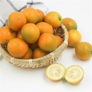 Fresh Kumquat  (Mainland China)