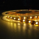 LED Rope Strip (China)