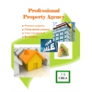 Property Agency (Hong Kong)