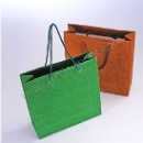 Flocking Finish Paper Bag (China)