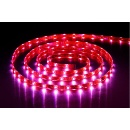 Flexible LED Strip (Hong Kong)