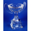 Crystal Champion Cup (Hong Kong)