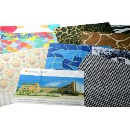 Digital Printing Microfiber Cloth (Taiwan)